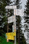 Wandelroutes omgeving Titisee